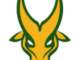 FEU_Tamaraws_official_logo