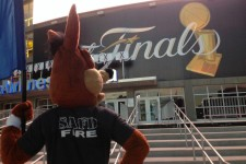 Spurs Coyote named Mascot of the Year